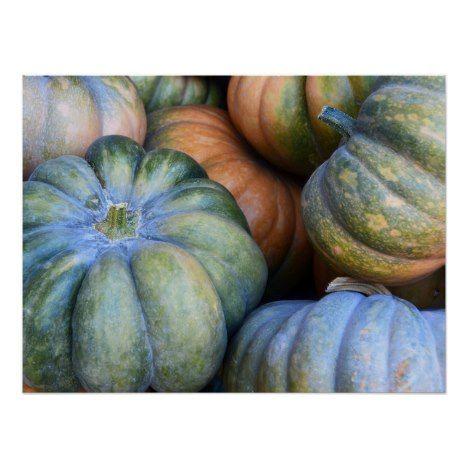 Autumn Pumpkins Poster Zazzle Com Green Area Rugs Pumpkin Gourd Vegetable
