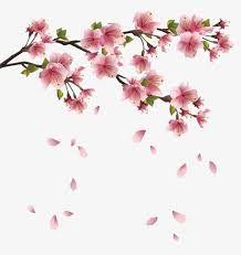 Pin De Flavia Vivia Em Estampas Pequenas Fondos De Flores Flores