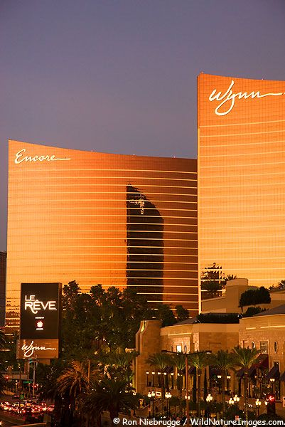 The Wynn and Encore Hotel resort and casinos , Las Vegas Nevada      (Where I stayed when I won my trip through the bank)