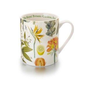 d880297a3ef5b369006a1485387b2f62 - Royal Botanic Gardens Kew Fine China Mugs