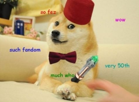 Very Doctor Such Cool Doge Meme Dog Memes Shiba Inu