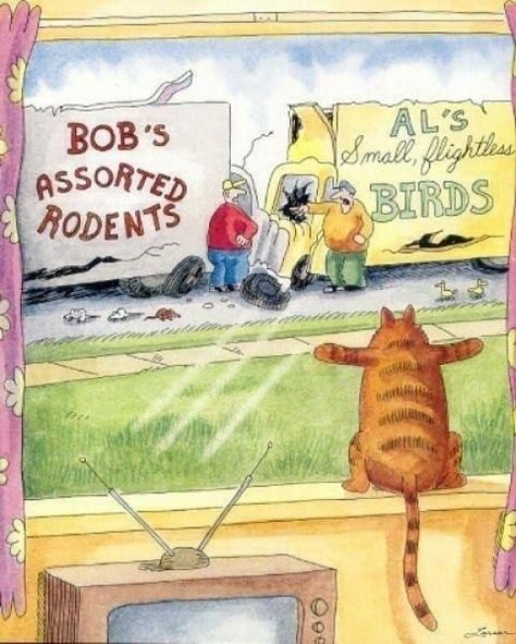31 trendy Ideas for funny cartoons pictures hilarious gary larson I Love Cats, Crazy Cats, Cute Cats, Funny Cats, Funny Animals, Cute Animals, Cats Humor, Far Side Cartoons, Far Side Comics