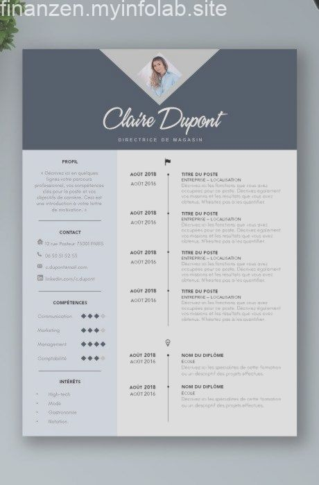 Exemples De Cv Plus De 20 Exemples De Cv Word Design Et Original Modele De Cv Design Modele Cv Exemple Cv