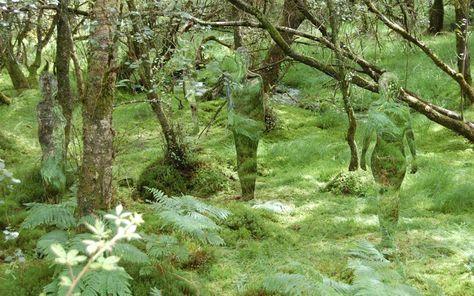 Loch Lomond, Scotland - Mirrored sculptures In the woodlands.