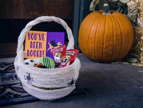 Give your neighborhood doggos something to bark about with a few DIY Halloween boo baskets made with love. 🎃 🐕 Pack this Howl-o-ween goody bag with dog treats and DIY toys. 🦴 Sponsored by Milk-Bone
