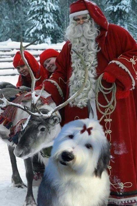 Santa Claus His Oes Helper Weihnachten