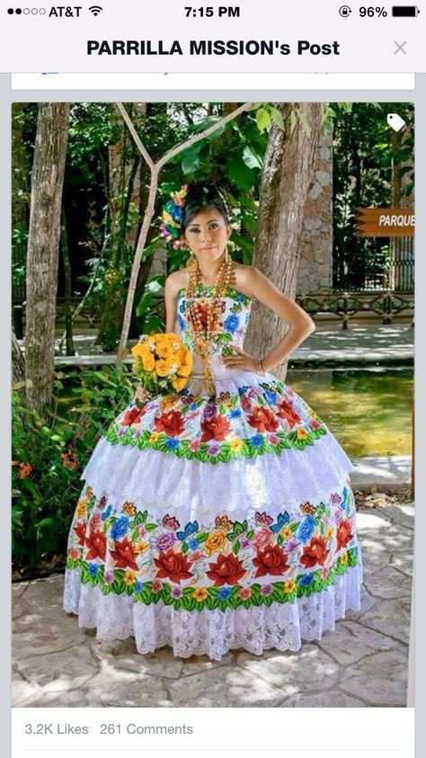 Pin by Elvie Amaro on Dresses | Mexican quinceanera ...