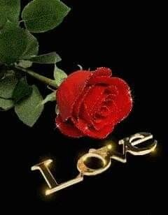 Pin By Nina On Love Pics Red Rose Love Love Wallpaper Love Images