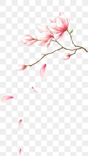 Grafico De Vetor De Flor Cor De Rosa Imagenes Png Sin Fondo Flores Pintadas Imagenes Png