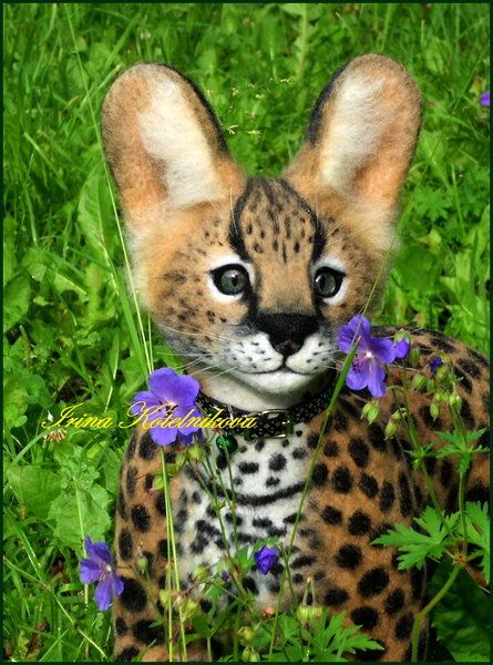 Kitten Serval By Irina Kotelnikova Serval Kitten Serval Cute