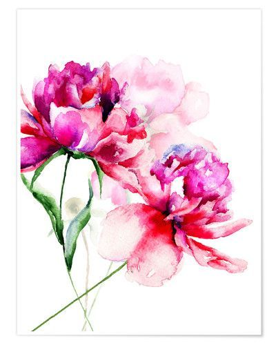 Schone Pfingstrosen In Aquarell In 2020 Peonies Watercolor
