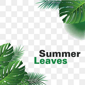 Marco De Hojas Tropicales Palma Hojas De Verano Vector Tropical Png Y Vector Para Descargar Gratis Pngtree In 2021 Tropical Leaves Tropical Background Watercolor Autumn Leaves