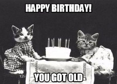 100 Best Happy Birthday Cat Memes Images Happy Birthday Cat Cat Birthday Memes Cat Birthday Funny