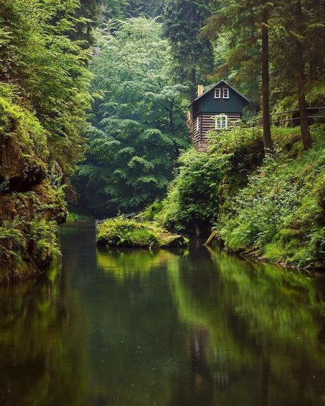 7cubes в Твиттере: «Green forest kingdom in the heart of bohemian switzerland   #travel #traveler #travelworld #placestovist #switzerland #forest #nomad