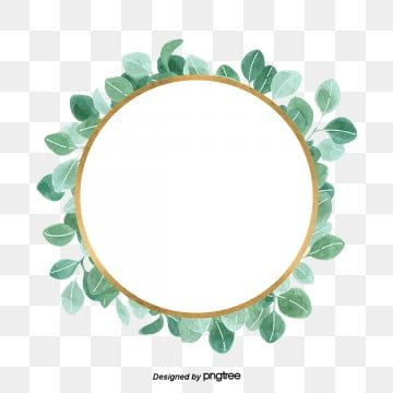 Round Eucalyptus Leaves With Simple And Fresh Borders Eucalyptus Clipart Leaf Eucalyptus Png Transparent Clipart Image And Psd File For Free Download Eucalyptus Leaves Wedding Borders Art Drawings Simple