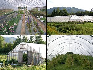 Different types of high tunnels