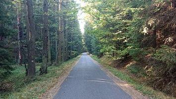 Wandern Sachsische Schweiz Sachsen Deutschland Abstecher In