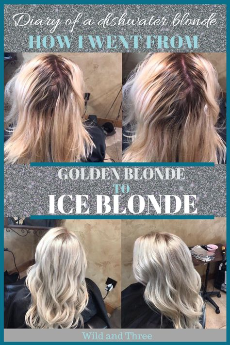 Diary of a Dishwater Blonde: How I went from Golden Blonde to Ice Blonde. - 'wild and three website' Toner For Blonde Hair, Blonde Hair At Home, Yellow Blonde Hair, Baby Blonde Hair, Dark Roots Blonde Hair, Silver Blonde Hair, Light Blonde Hair, Icy Blonde, Platinum Blonde Hair