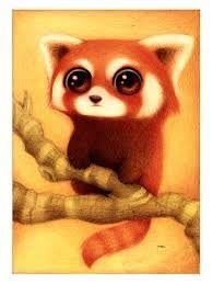 Dessin Panda Roux Mignon