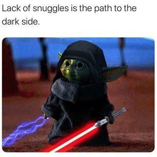 Naughty He Is Yoda Funny Funny Star Wars Memes Yoda Meme