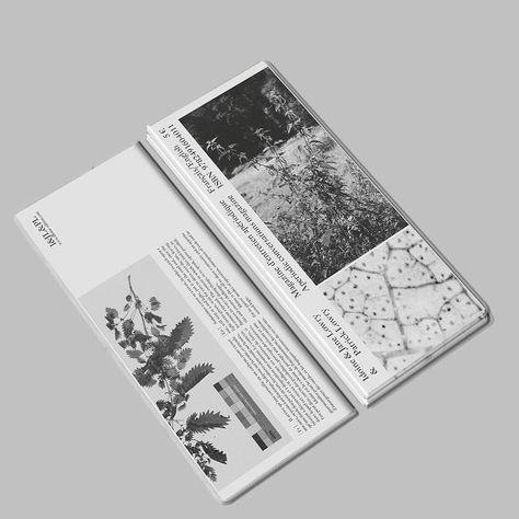 """Jérémy Glâtre on Instagram: """"Idoine magazine — Idoine  Jane Lowry  Patrick Lowry, 2019. With contributions from Robin Dowell, Sarah Bowler, Olia Fedorova, George…""""#bowler #contributions #dowell #fedorova #george #glâtre #idoine #instagram #jane #jérémy #lowry #magazine #olia #patrick #robin #sarah"""