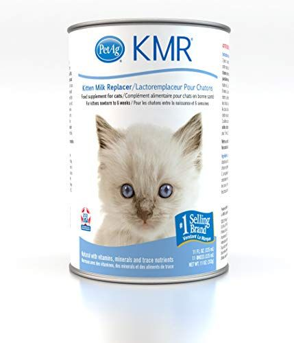 The Best Kitten Milk Replacer Of 2019 Review Best Pet Pro Pets Digestive Balance Kitten