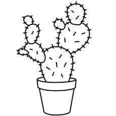 Cactuscraft Kaktus Ausdrucken Fadenkunst 8