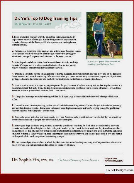 Best Tips For Dog Training And Pics Of Dog Whisperer Training Tips