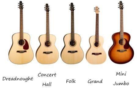 Seagull Guitars Categorized By Shape Seagull Guitars Guitar Guitar Lessons
