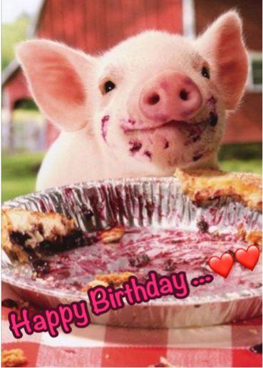 Idee Von Kirstin Sund Auf Geburtstag Susse Baby Schweine