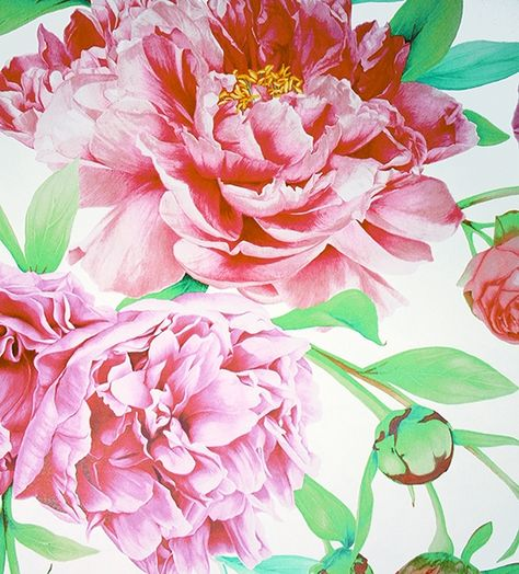 Phoebe Wallpaper A Magnificent Floral Wallpaper Featuring Blousy