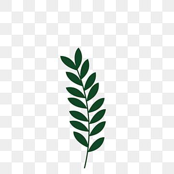 Gambar Rumput Tumbuhan Hijau Ilustrasi Bebas Daun Kartun Daun Hijau Meninggalkan Percuma Daun Tumbuhan Png Dan Vektor Untuk Muat Turun Percuma Di 2021 Ilustrasi Hijau Cara Menggambar