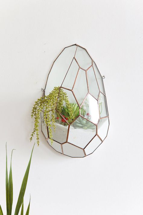 Glass Terrarium Wall Decor