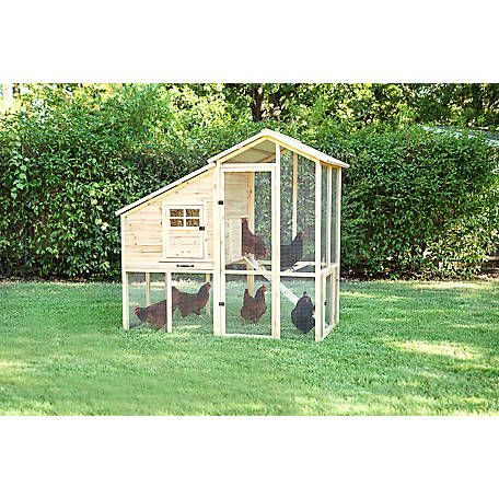 Petmate Superior Construction Chicken Coop 70401d At Tractor