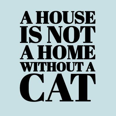 Sweetumswalldecals A House Is Not A Home Without A Cat Wall