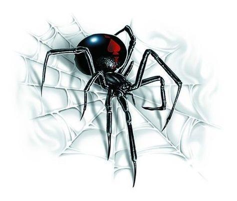 Black Widow Spider On Web Car Sticker Tattoo Art Auto