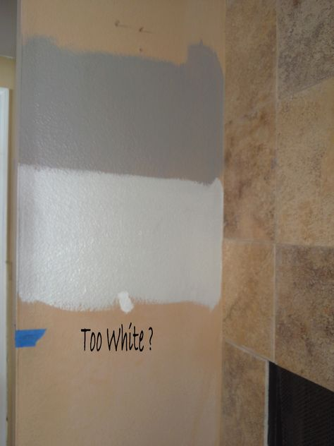 Silver Pointe and  Pewter Cast Sherwin Williams