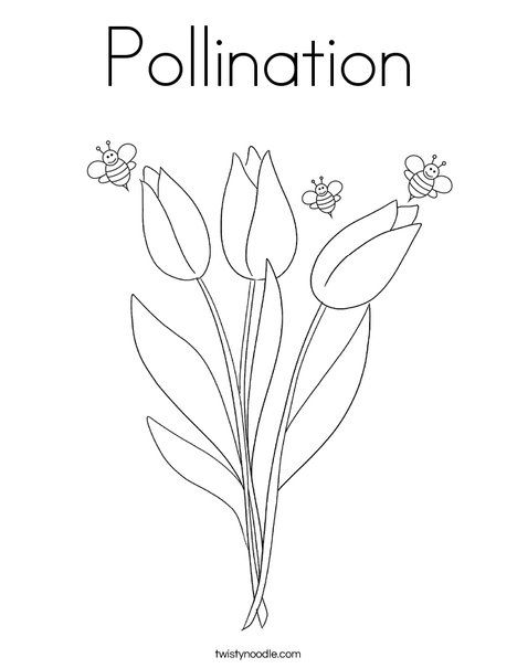 Pollination Coloring Page Twisty Noodle Coloring Pages Spring Coloring Pages Coloring Pages Nature
