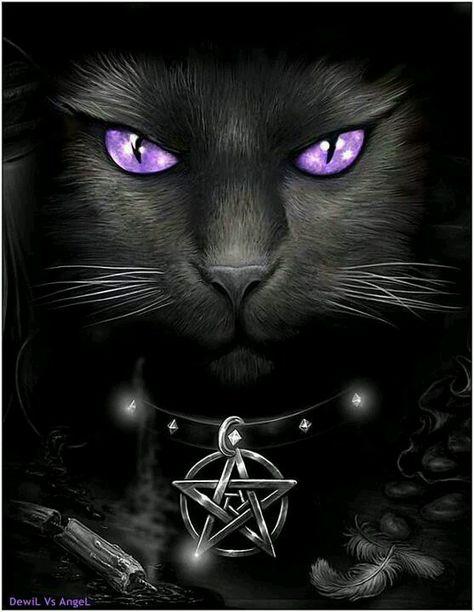Cat Magic ~ http://universal-wellness.blogspot.com/2015/02/baring-my-soul-and-planting-dream.html