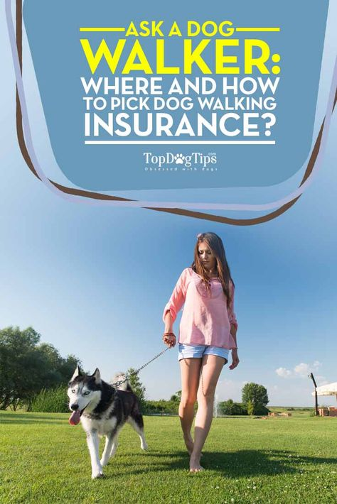 Where and How to Pick Dog Walking Insurance. Dog walking is a rewarding but high risk business for both the walker and the client. Most people consider dogs to be a family member, and the thought of leaving them in a stranger's care is very anxiety-inducing. Not only that, but people are suspicious of letting strangers into their home, especially when they are away, and with good reason. This is why dog walking insurance and bonding are absolutely crucial to becoming successful in this…