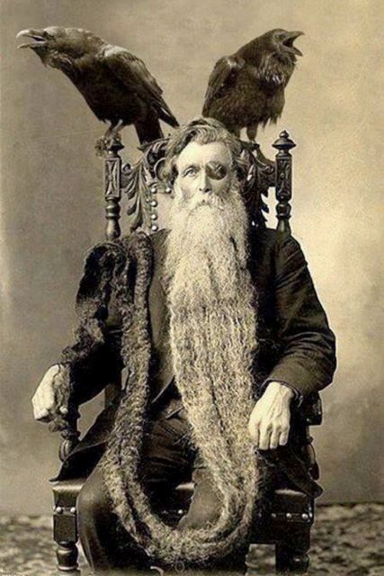 Bearded Odin Man Long Longest Beard Unusual Vintage Photography Reprint Reprinted Victorian Edwardian Sepia or Black and White Photo Print