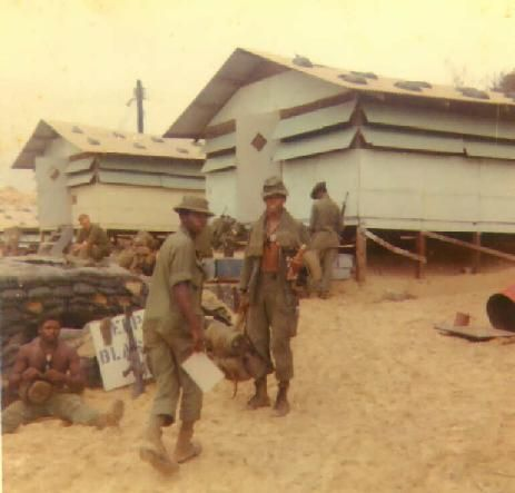 Chu Lai 1969 Marines | Remember the hooches? Nope, these guys were pogues, in the rear with the gear, part of the 90% of Vietnam era dudes that never saw combat ... remember trying to sleep under a poncho in the rain in a puddle ?