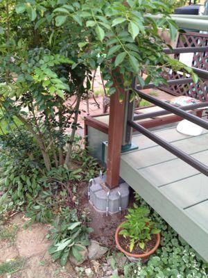 タープを張る柱を建てる 庭 木 タープ 庭