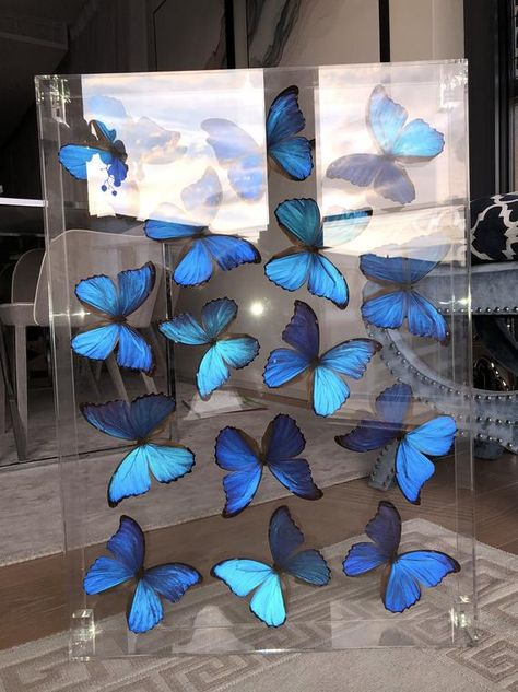 Butterflies in acrylic case Quince Themes, Quince Decorations, Butterfly Decorations, Quince Ideas, Quince Invitations, Sweet 16 Invitations, Invitation Cards, Party Invitations, Cinderella Quinceanera Themes