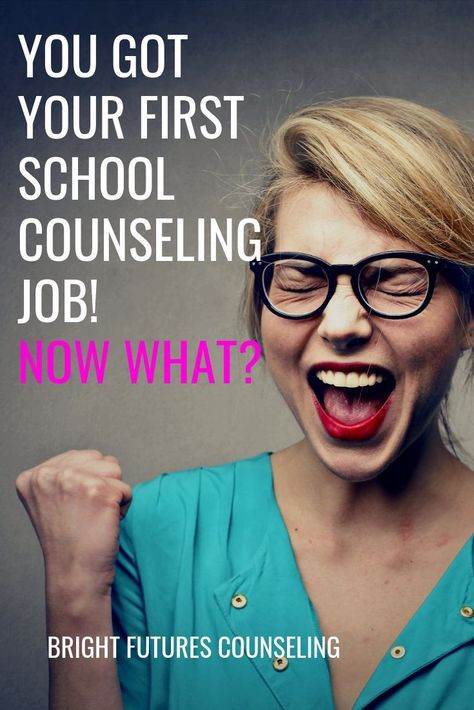 First Year School Counselors: Start Here! — Bright Futures Counseling