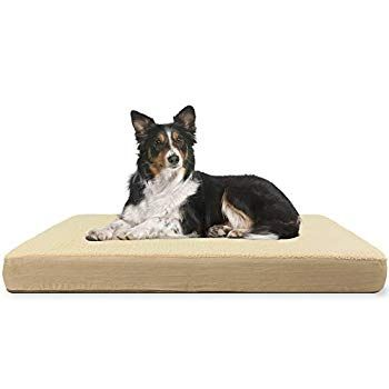 Kundu Rectangular Orthopedic Memory Foam Dog Bed Includes Waterproof Inner Protector And Removable Cove In 2020 Memory Foam Dog Bed Dog Bed Large Extra Large Dog Bed