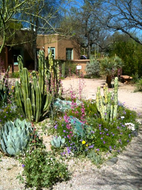 Why Tucson On Pinterest Training Programs Roads And