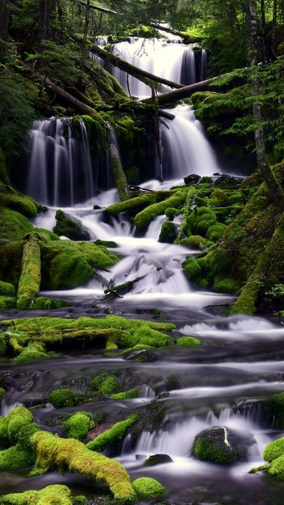 The Latest Iphone11 Iphone11 Pro Iphone 11 Pro Max Mobile Phone Hd Wallpapers Free Download Waterfall Moss Water Nature Pictures Free Wallpaper Waterfall