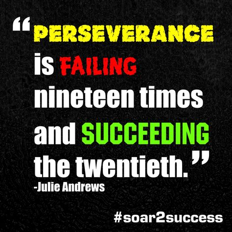 Perseverance is falling nineteen times and succeeding the