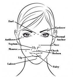 I like anti-dermal or dermal anchors...I like any piercing that ...